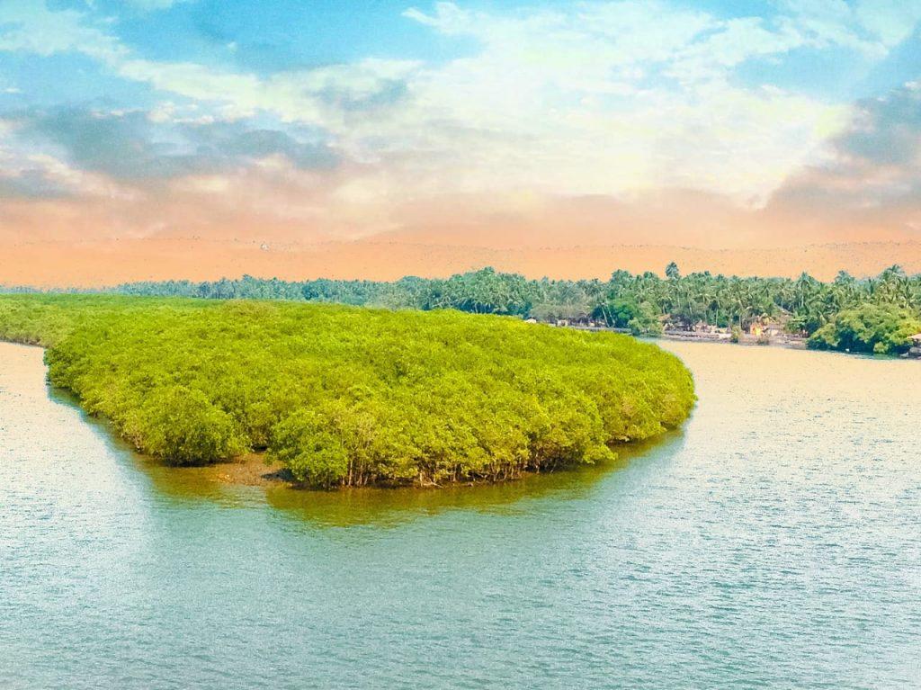 Goa-Basilica-of-Bom-Jesus-Church Best Places to Visit in Goa