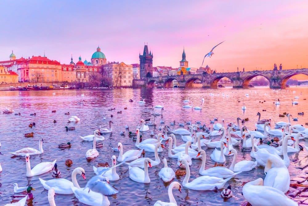 What to Visit in Prague