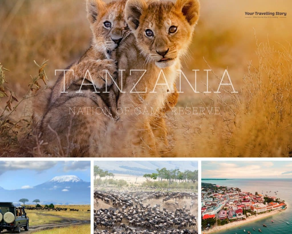 Tanzania (Best places to visit in Africa and the best for Safari Adventure):