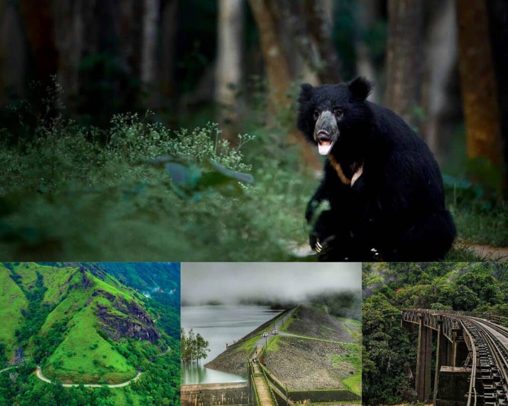 Coorg- best hill station of India