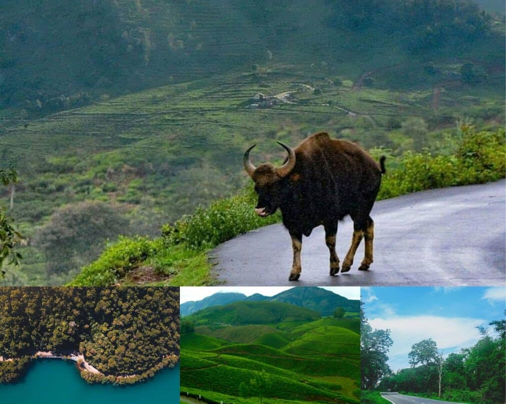 Ooty- one of the best hill stations in India