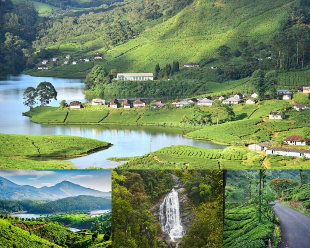 Munnar- Kerala- Best Honeymoon Destinations in South-India