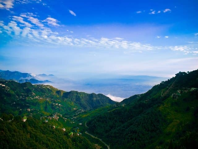 Dense and Beautiful Forest of Mussoorie, Uttarakhand- India