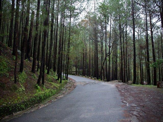Lansdowne, Solo Trip to Uttarakhand