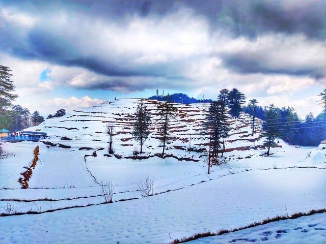 Kufri- Himachal Pradesh
