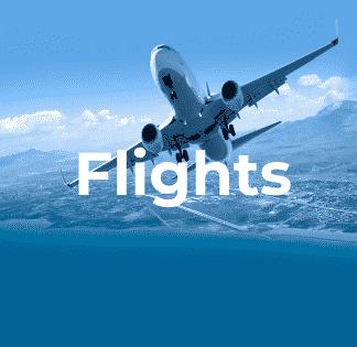 flights_49939662 (1)
